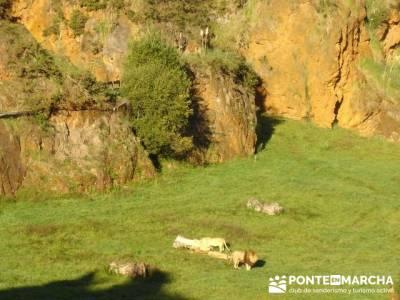 Parque de la Naturaleza de Cabárceno - Cantur - Cantabria; senderismo sierra guadarrama
